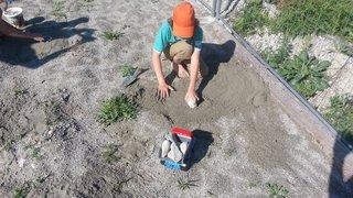 Des gravières marquent des points pour l'écologie