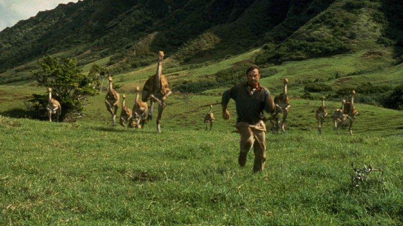 Les mammifères sont devenus diurnes après l'extinction des dinosaures