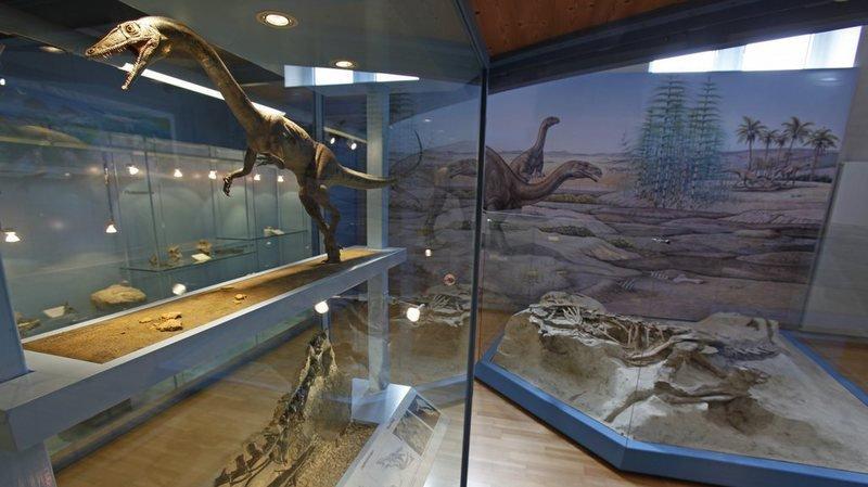 Paléontologie: un dinosaure carnivore découvert dans une carrière d'argile en Argovie
