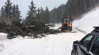 Tempête Evi: plusieurs axes routiers fermés en raison du danger d'avalanche