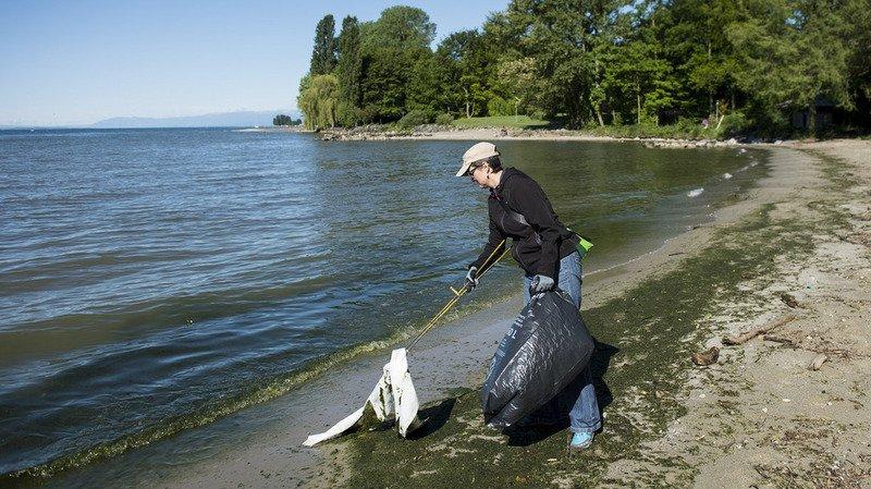 3000 débris de plastique ont été collecté en mars 2016 sur douze plages autour du lac Léman, l'une des plus grandes étendues d'eau douce d'Europe occidentale.
