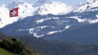 Un chat fripé star du web, les Suisses de France ou la pauvreté dans un pays riche... l'actu suisse vue du reste du monde