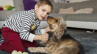 Un petit Valaisan reçoit un chien qui traque son diabète
