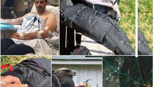 Un parapentiste vaudois attaqué par un aigle