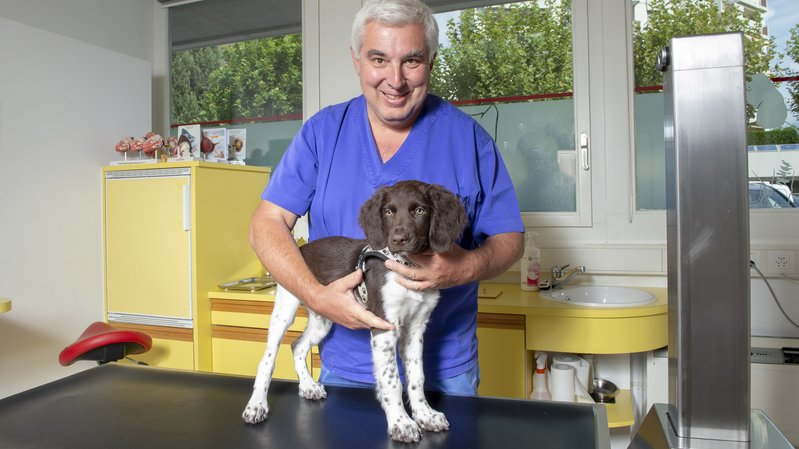 Yves Charlot, médecin vétérinaire.