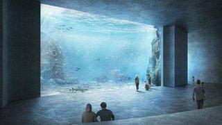 Loisirs: un océanarium devrait ouvrir ses portes à Bâle en 2024