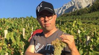 Le généticien de la vigne José Vouillamoz primé en Espagne