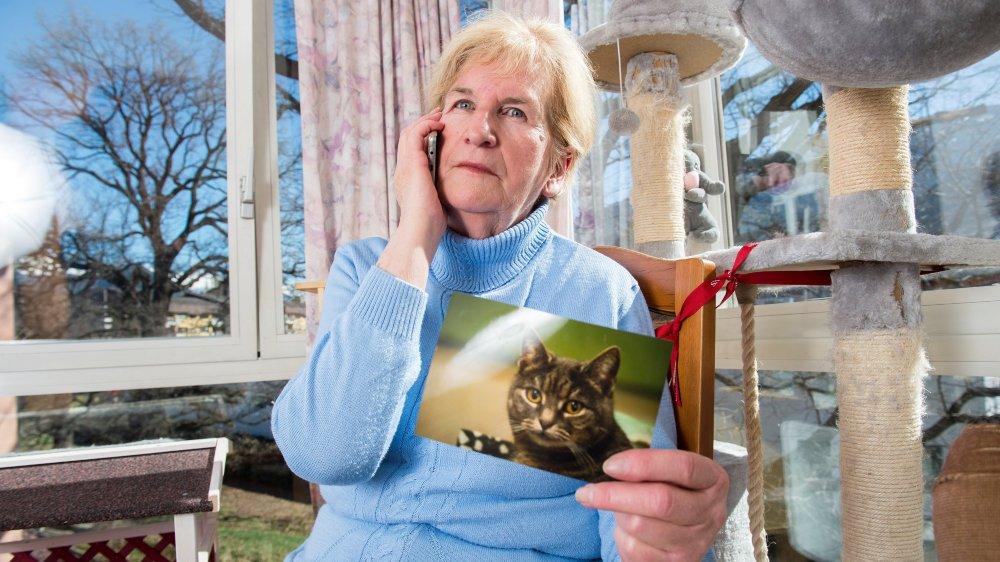 Yvette Dorsaz est capable de localiser les chats perdus par téléphone.