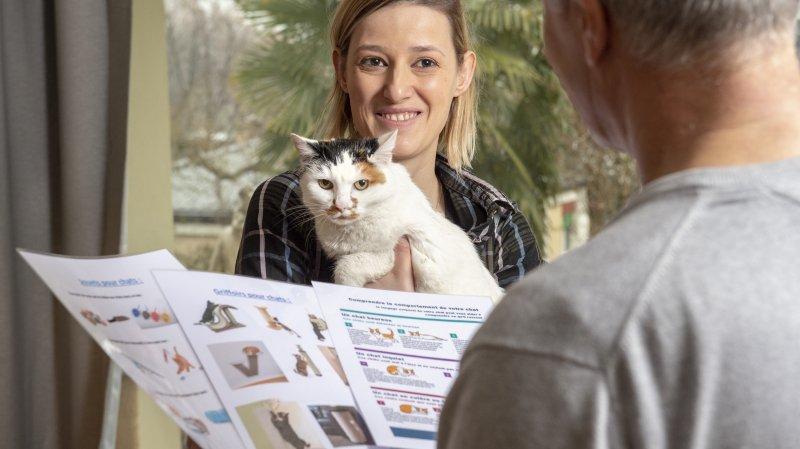 Ces métiers insolites pour nos animaux: Vanessa la comportementaliste pour chats