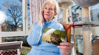 Ces métiers insolites pour nos animaux: Yvette, la médium qui retrouve votre compagnon