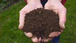 Washington pourrait devenir le premier Etat à légaliser le compost humain