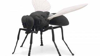 Art Basel: une fillette de 3 ans détruit une mouche à 56'000 francs