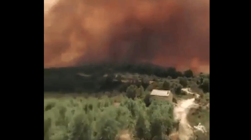 Canicule: 2500 hectares de forêt partis en fumée lors d'un incendie en Espagne