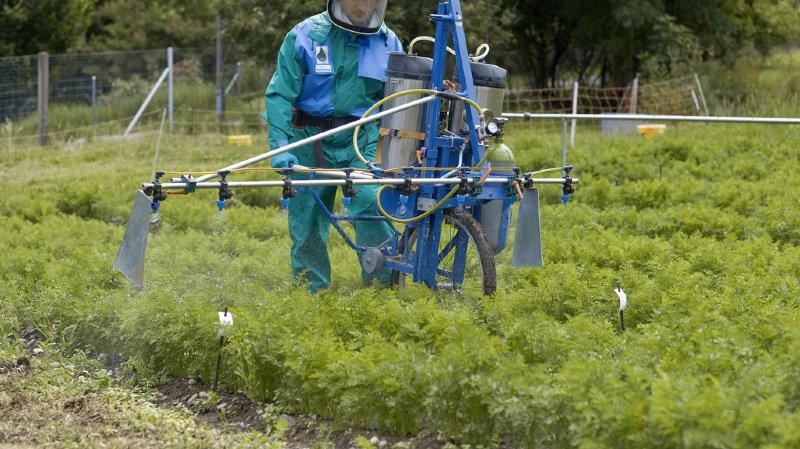Agriculture: fabriquant et distributeurs recourent contre l'interdiction de 12 pesticides