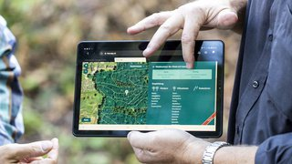 Climat: une app permet de savoir quels arbres planter avec le réchauffement