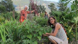 Fully: des jardiniers amateurs ou en herbe recherchés pour un projet participatif