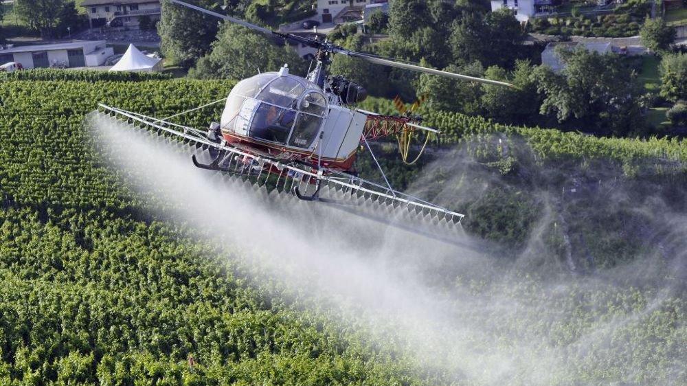 La question de l'utilisation des hélicoptères pour le sulfatage divise.