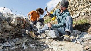 Valais: 100millions pour sauvegarder les murs en pierres sèches dans les vignes en terrasses
