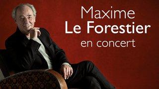 Maxime Le Forestier en concert