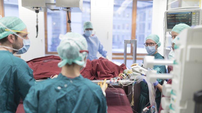 Les transplantations les plus courantes concernent les reins et le foie.