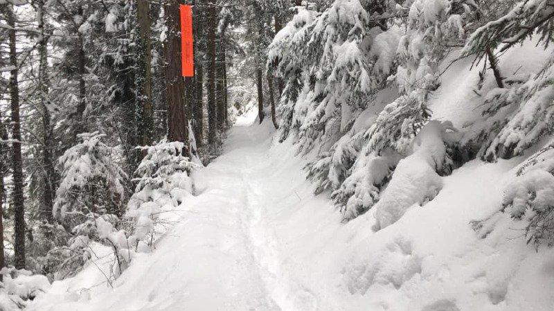 Des ajustements mais pas d'annulation pour la course de Noël et le Trail des Châteaux